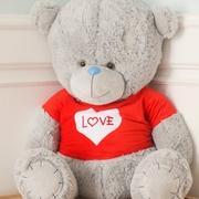 Тедди -большой плюшевый медведь